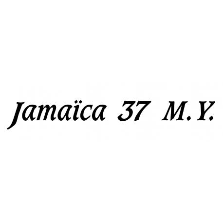 Gib Sea Jamaica 37 M.Y.