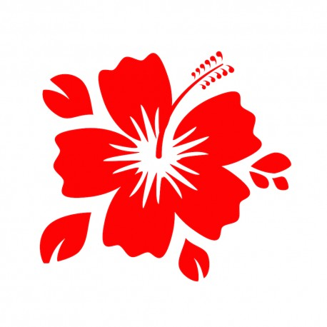 Fleur hibiscus 3