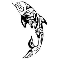 Dauphin maori