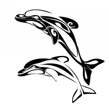 Dauphins duo