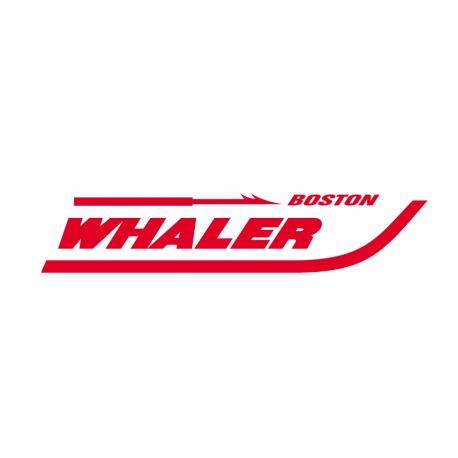 Boston Whaler 3