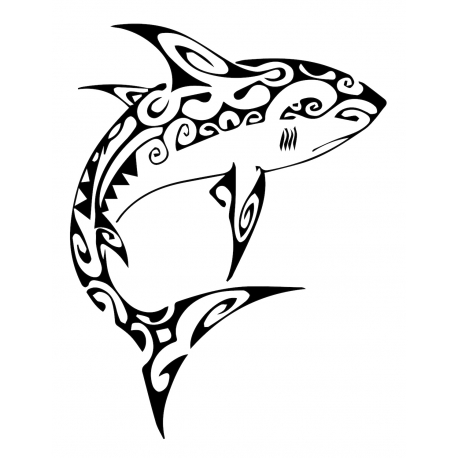 Requin maori
