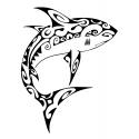 Thème animaux marins
